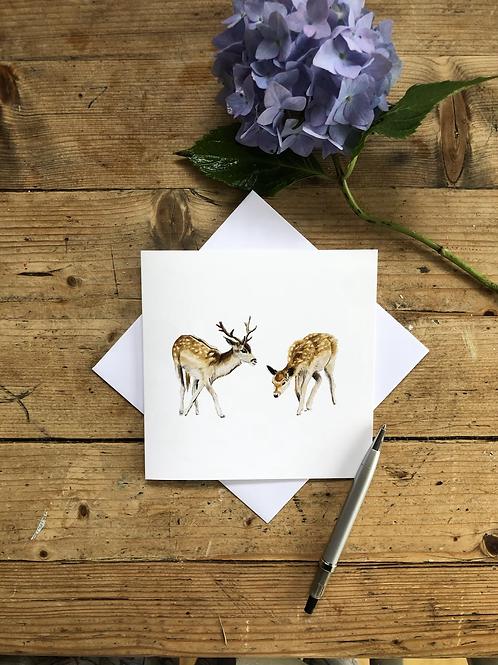 The wild deer of Knole Park, Sevenoaks