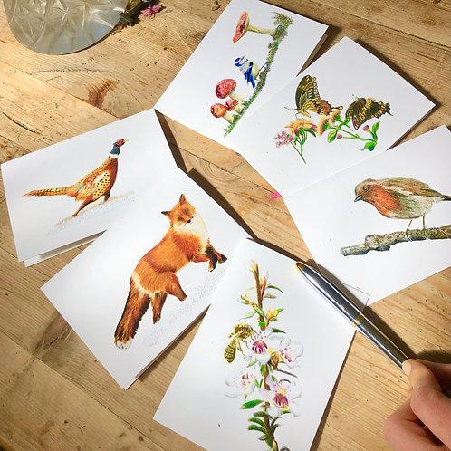 English Garden greeting card collection