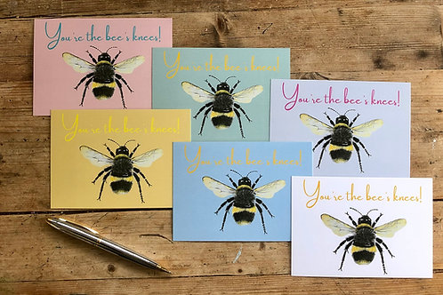 'You're the Bee's Knees' greeting card collection