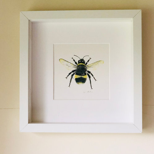 High Quality Print: The Beauty of Bees