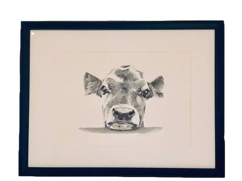 High Quality Print: 'Here's Looking at You' beautiful cow horizontal