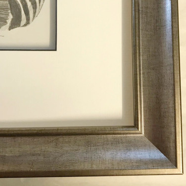 A stunning frame in a silver wood.The colour highlights the drawing but fits with both silver and gold tones in a drawing room