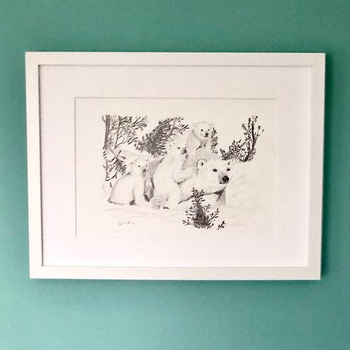 High Quality Print: A polar bear and her three cubs