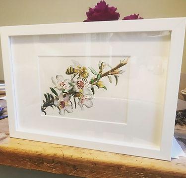 Bee framed for website.jpg
