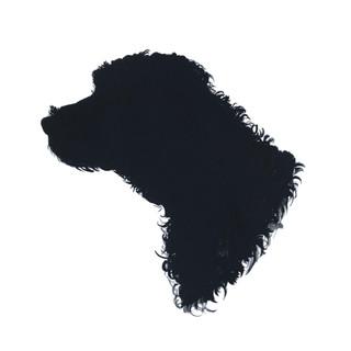 Dog Montagu.jpg