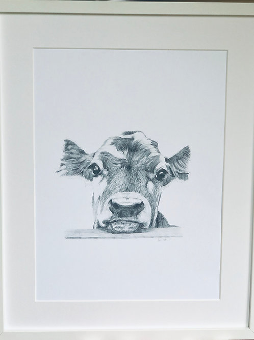 High Quality Print: 'Here's Looking at You' beautiful cow vertical