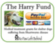The Harry Fund - Donation Logo.jpg