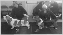 Best Dog, RBinS & Best Puppy Dog