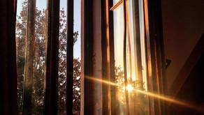 Reflection and Resurrection