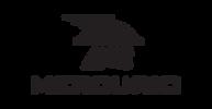 logo mercurio.png