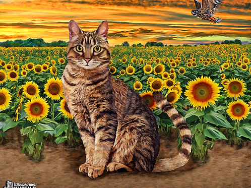 11x14 Neko in Sunflower Fields
