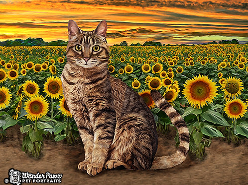 8x10 Neko in Sunflower Fields