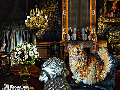 Mandrake in Royal Suite