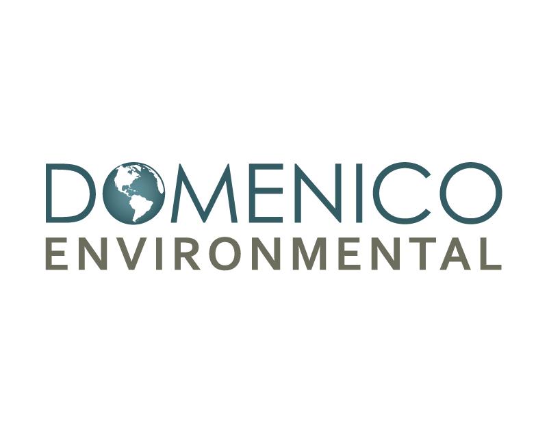 Domenico Environmental