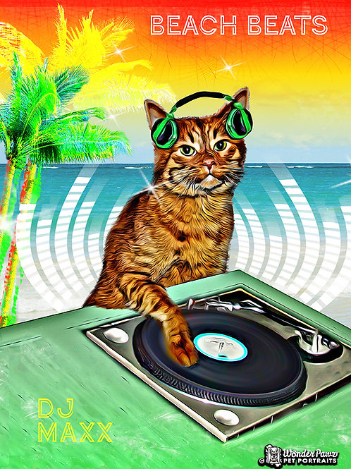 DJ Maxx in Beach Beats