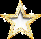 kisspng-star-diamond-jpeg-network-graphi
