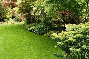 How Much Does It Cost To Mow And Maintain A Lawn?