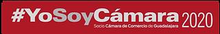 YOSOYCAMARA 2020-02.png
