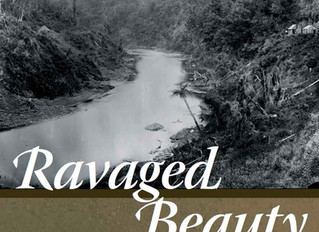 Ravaged Beauty should be 'mandatory reading'