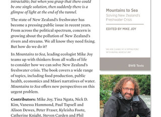 'Mountains to sea' New book examines how we can solve NZ's freshwater crisis