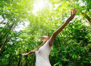 The connection between nature & wellbeing