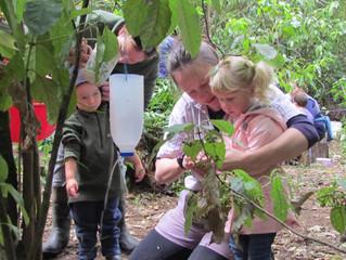 Bush kindy: kids in nature