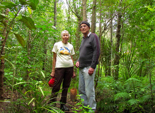 Oases of nature created by unsung restoration heroes