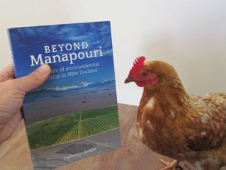 """Beyond Manapouri"" short-listed for award"