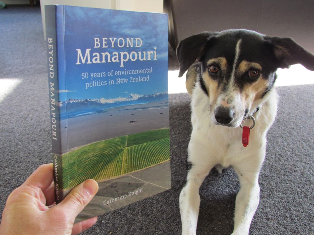 Gracie and Beyond Manapouri