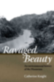 Ravaged Beauty cover.jpg