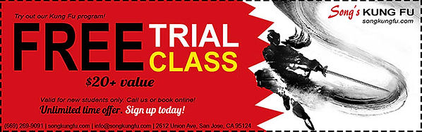 Kung Fu school promotion - free trial class