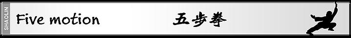 Kung Fu white belt