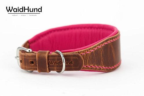 """Windhund-Halsband """"Basic"""""""
