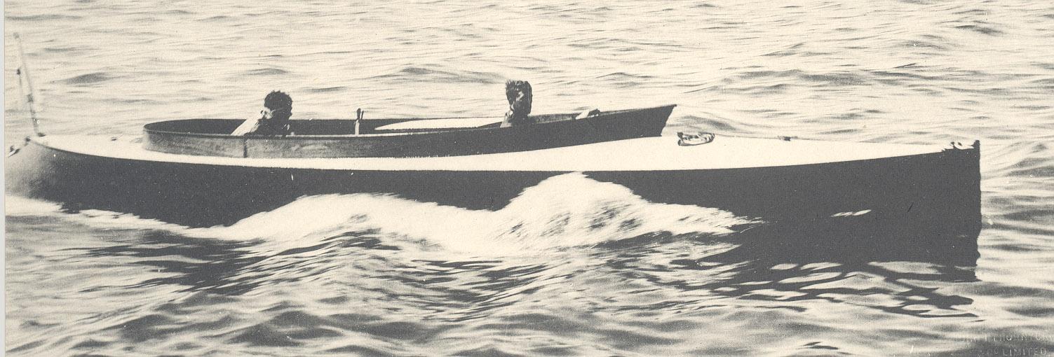 Scolopendra - 1903