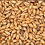 Thumbnail: Paul's Maris Otter Malt 25kg (crushed)