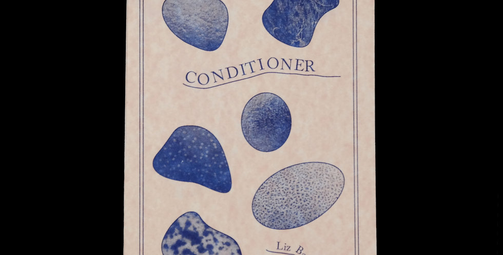 Liz Barr: Conditioner