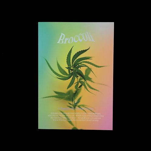 Broccoli Magazine: Issue Eleven