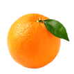scents-orange.png