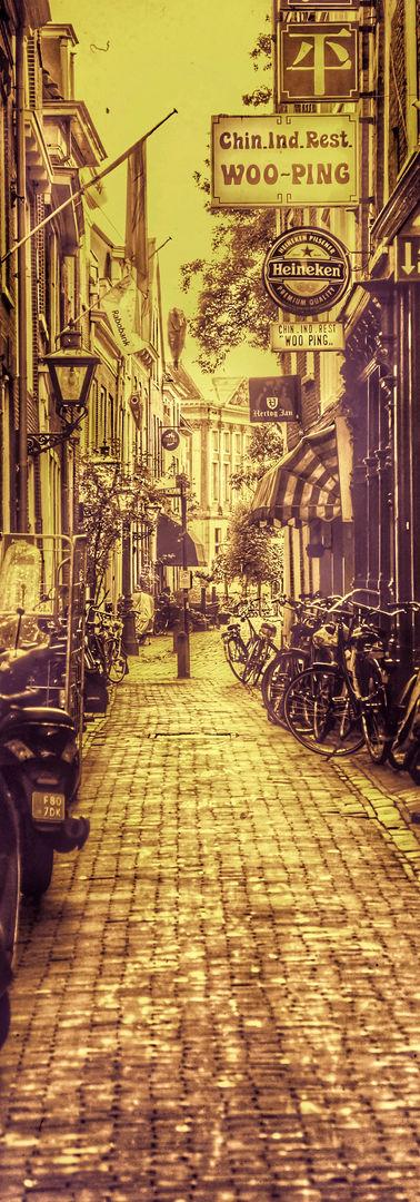 A Random Leiden Street