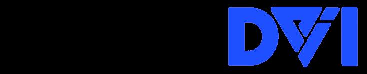 DVI-1-Noir.png