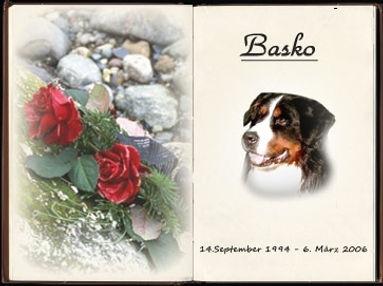 Basko unser ungarischer Held