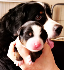 Mutter und Tochter.JPG