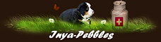 Inya-Pebbles.png