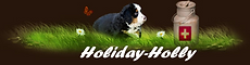 Holiday-Holly.png