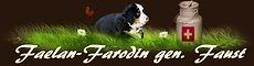 Faelan-Farodin aus Cabacasi´s Bernerhaus