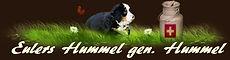 Eulers Hummel aus Cabacasi´s Bernerhaus