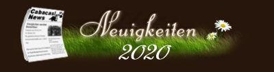Neuigkeiten 2020.jpg