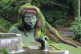 My Inner Garden