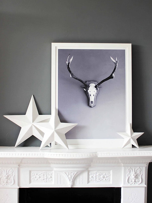 We Are Amused Stag Print