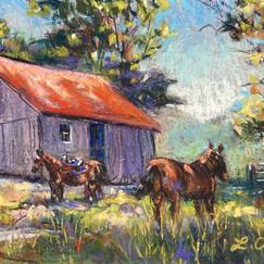 Goshen Horse Farm